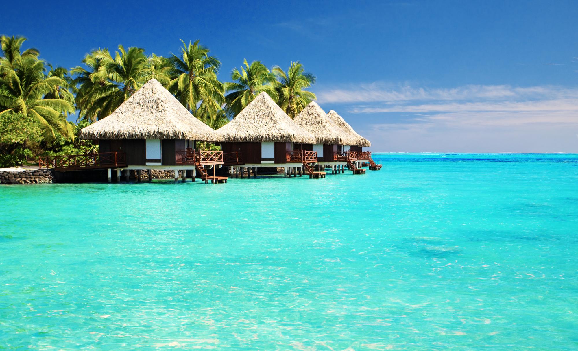 PARC C.E.O. OFF TO THE SOLOMON ISLANDS